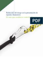 18. Reducción Del Riesgo en Presentación de Report Financ