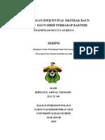 contoh format efektifitas.pdf