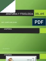 Anatomia y Fisiologia Del Ave