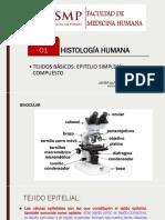 Tejido Epitelial Usmp Histologia