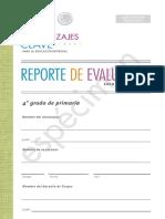 reporte_evaluacion_18_19 (2)