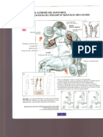 Musculation_guide.pdf