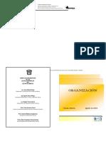 10_ Manual de Organización