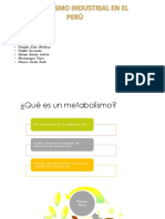Trabajo de Metabolismo Industrial en El Peru 1