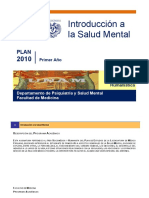 I Introduccion Salud Mental