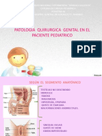 Cirugia Pediatrica 2do Seminario