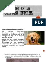 El Perro en La Cultura Humana