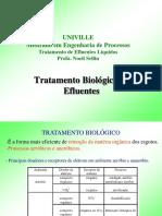 AulaTratamentoBiologicoMEP_2012