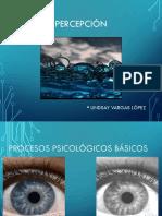 sensacionypercepcion.pdf