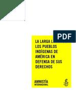 LUCHA DE PUEBLOS INDIGENAS