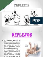 Reporte Ana María Zumarraga Castellanos