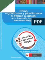 Planificacion Anual y de Lenguas