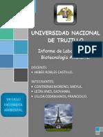Informe_...._de_biote[1 y 2].docx