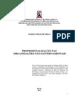 Profissionalização nas organizações não governamentais.pdf