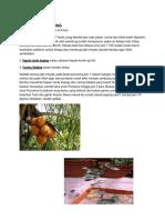 SANGKAL PUTUNG SCRIBD.pdf