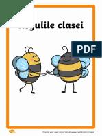 Regulile-clasei-albinutelor.pdf