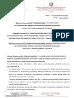 C.M. Bandi Zucchelli 2017 post RV Dir. 13-06-2017 A.A. 2015-2016.pdf