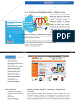 OpenCart Ecommerce Website Development Company Noida,Delhi