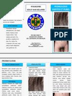 Leaflet Pedikulosis