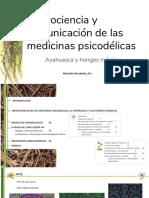 Neurociencia y comunicacion de las medicinas psicodelicas (CORTO)