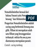 Nemathelminthes-12