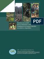 Directrices OIMT Bosques Degradados.pdf