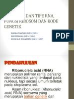 BIOMOLEKULER STRUKTUR DAN TIPE RNA, FUNGSI RIBOSOM DAN KODE GENETIK KEL.6.pptx
