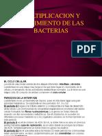4 FISIOLOGIA 2.pdf