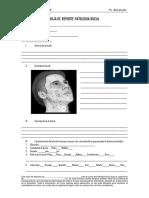 Hoja de Reporte Patologia Bucal Unica