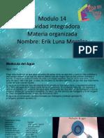 Luna Morales_Erik_M14S1_materia organizada.pptx