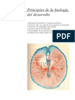 introduccion biolo_desarrollo.pdf