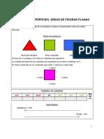 12.medida_de_superficies.pdf