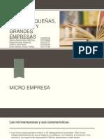 Micro-pequeñas-medianas-y-grandes-empresas EQUIPO SANDRA.pptx