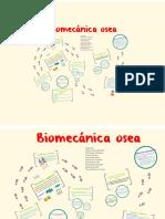 Biomecánica del tejido óseo