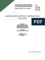 Informe de Estructura Celular