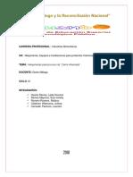 INFORME DE ING. MALAGA CARNE AHUMADA.docx