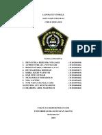 laporan sgd 3 lbm 2 blok 12.docx