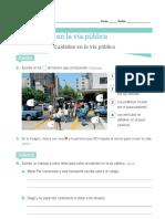 Guia Normas en La via Publica