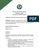 PROYECTO - MATEMATICA.docx