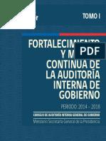 Libro Caigg Tomo I Auditoria Interna.