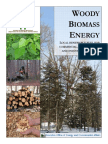 Woody Biomass Energy.pdf