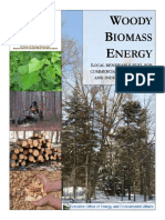Woody Biomass Energy.pdf