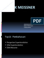 EFEK MEISSNER.pptx