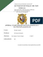 Informe p3 y4 - Biovegetal