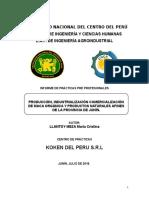 Informe Final Cristina