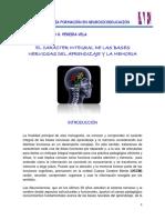 monografia-neurosicoeducacion-nelson.pereira.pdf
