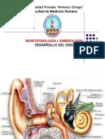 embriologia del oído
