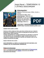 NCIS Criminologia Naval - Temporada 13 Latino DESCARGAR EPISODIOS