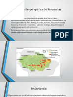 Tala de Bosques en La Amazonía