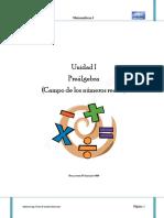 Tema 1 Prealgebra